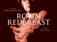 RobinRedbreastlarge